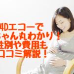 【妊婦健診】4Dエコーで性別や表情丸見え!画像おすすめ保存方法にはコツがある!