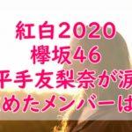 紅白2019欅坂46【平手友梨奈に頭よしよし】に感動!涙の理由とポンポンしたのは誰?
