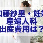 加藤紗里が妊娠検査に通う産婦人科の病院が判明!出産費用なども
